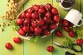 Картинка мята, ножницы, вишни, кружка, ягоды, красный