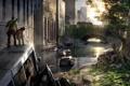 Картинка машины, город, апокалипсис, Элли, сша, эпидемия, The Last of Us