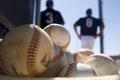 Картинка спорт, мячи, basebal