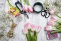 Картинка decoration, florist, pink, тюльпаны, tulips, workplace, spring