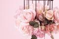 Картинка клетка, цвети, рози