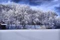 Картинка лес, вода, Зима, мороз, hdr, загадочность