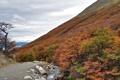 Картинка осень, деревья, ручей, горы, склон, небо