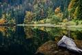 Картинка пейзаж, осень, камень, лес, вода, озеро, деревья