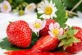Картинка листья, цветы, ягоды, клубника, красные, джем, варенье