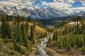Картинка лес, горы, природа, река, долина