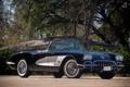 Картинка деревья, Chevrolet, 1960, спорткар, corvette, шевроле, классика