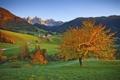 Картинка дорога, осень, трава, деревья, дома, горы, небо