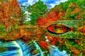Картинка осень, небо, деревья, мост, река, арка, дамба