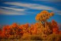 Картинка осень, небо, деревья, пейзаж, горы