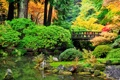 Картинка камни, пруд, кусты, деревья, мост, парк, осень