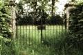 Картинка матушка природа, трава, креатив, ворота, фото
