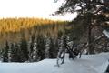 Картинка зима, природа, bike, привал