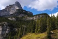 Картинка облака, небо, канада, Canada, Alberta, деревья, горы