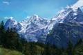 Картинка лес, пейзаж, горы, природа, холмы, арт