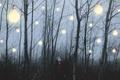 Картинка лес, лампы, девушка, свет
