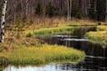 Картинка природа, пейзаж, река, деревья, лето