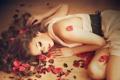 Картинка девушки, модель, розы, лепестки, платье, girls