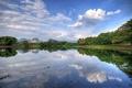 Картинка forest, lake, malaysia, gopeng