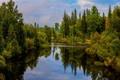 Картинка лес, небо, облака, деревья, пейзаж, озеро, отражение