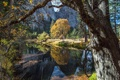 Картинка Fall, Yosemite, River, Trees, Reflection, Fall Colors