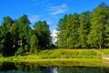 Картинка деревья, природа, парк, река, фото, усадьба, Подмосковье
