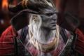 Картинка фентези, игра, Dragon Age 2, Аришок