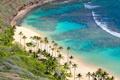 Картинка пляж, пальмы, океан, Hawaii, Oahu, коралловый риф