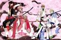 Картинка девушка, дерево, аниме, сакура, парни, мечи, хроника крыльев