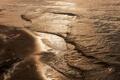 Картинка песок, пена, ветки, волны, берег