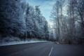 Картинка пейзаж, деревья, дорога, иней, природа, снег, знаки