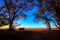 Картинка солнце, деревья, берег, лавочка