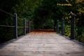 Картинка осень, мост, природа