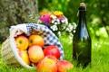 Картинка трава, цветы, вино, корзина, яблоки, букет, пикник