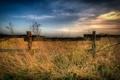 Картинка поле, пейзаж, забор