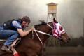 Картинка всадник, конь, спорт