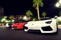 Картинка белый, LP700-4, Lamborghini Aventador
