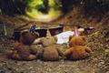 Картинка лес, девушка, мишки, колпаки, контрабас, мягкие игрушки