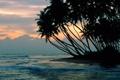 Картинка море, закат, тучи, пальмы, вечер, прибой