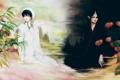 Картинка свет, цветы, тьма, аниме, арт, парни, hoozuki