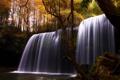 Картинка лес, пейзаж, природа, камни, водопад, мох