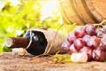 Картинка вино, бокал, бутылка, виноград, бочка, wine, grapes