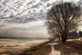 Картинка деревья, пейзаж, природа, река, весна