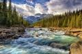 Картинка лес, горы, река, камни, поток