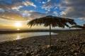 Картинка море, пляж, закат, зонты