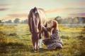 Картинка поле, девушка, конь