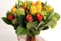 Картинка цветок, розы, красивые, букет, тюльпаны, цветы