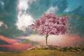 Картинка поле, небо, пейзаж, цветы, дерево