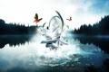 Картинка лес, бабочки, озеро, хреновина