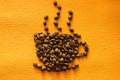 Картинка оранжевый, кофе, зерна, coffee